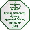 Approved Driving Instructor (car) Logo