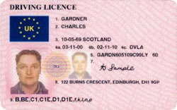 Sample Photocard Driving Licence